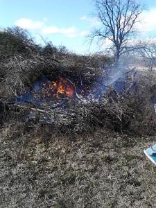 burn pile 1